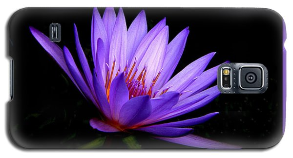 Dark Side Of The Purple Water Lily Galaxy S5 Case by Rosalie Scanlon