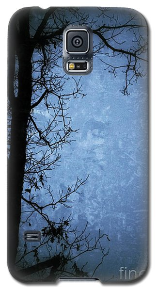 Dark Tree Silhouette  Galaxy S5 Case