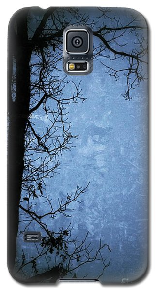 Dark Tree Silhouette  Galaxy S5 Case