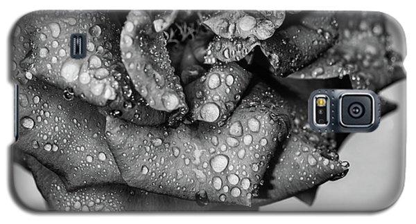 Dark Wet Rose Galaxy S5 Case