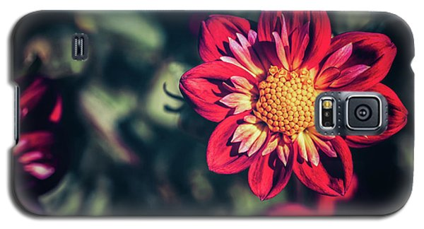 Darling Dahlia Galaxy S5 Case