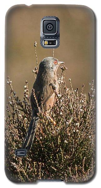 Dartford Warbler Galaxy S5 Case
