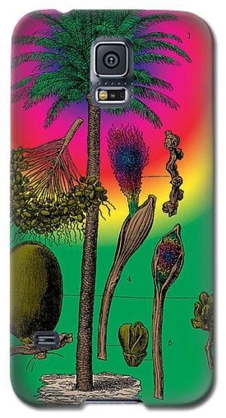 Date Palm Galaxy S5 Case