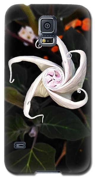 Datura Bud  Galaxy S5 Case