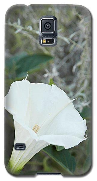 Datura Galaxy S5 Case