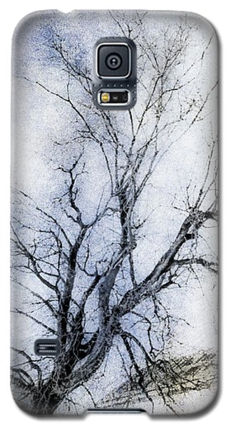 Daunting Galaxy S5 Case