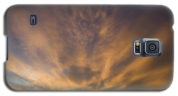 Galaxy S5 Case featuring the photograph Dauphin Heavens by Dylan Punke