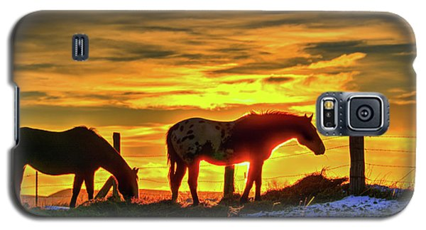 Dawn Horses Galaxy S5 Case