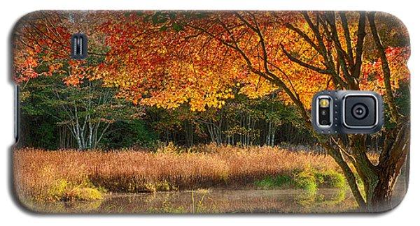 Dawn Lighting Rhode Island Fall Colors Galaxy S5 Case