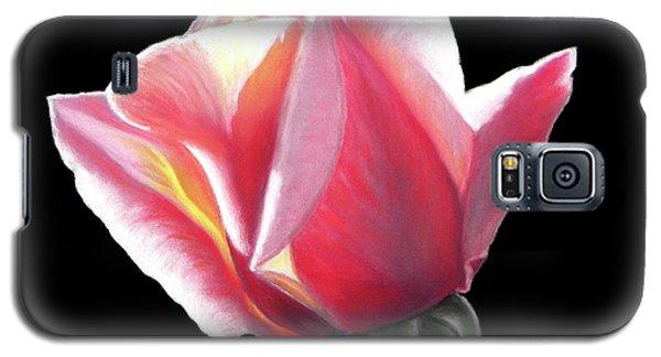 Dawn's Early Light - Pastel Galaxy S5 Case