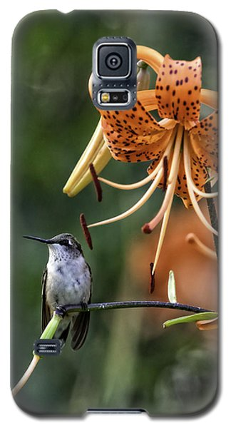 Day Hummer Galaxy S5 Case