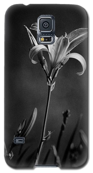 Day Lilly Galaxy S5 Case
