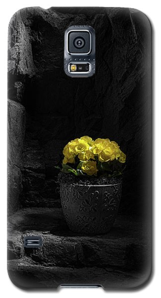 Galaxy S5 Case featuring the photograph Daylight Delight by Tom Mc Nemar