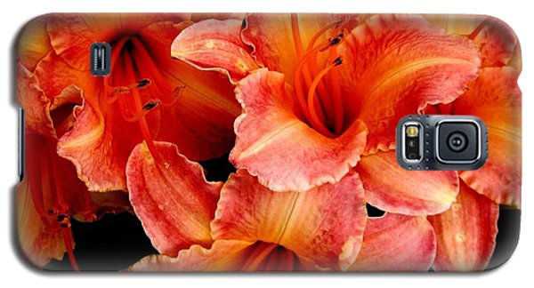 Daylilies 1 Galaxy S5 Case by Rose Santuci-Sofranko
