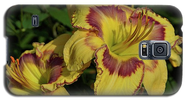 Galaxy S5 Case featuring the photograph Daylilies And Zinnia by Sandy Keeton