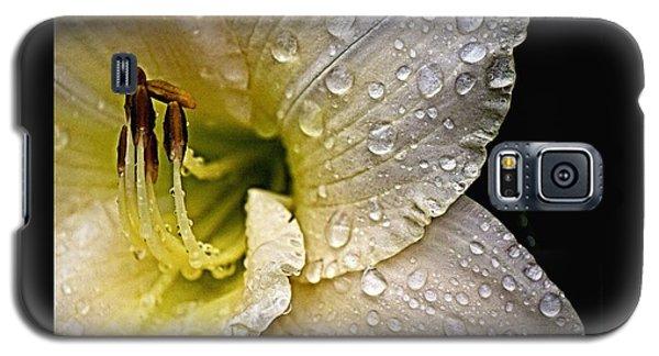 Daylilly 1 Galaxy S5 Case
