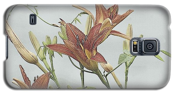 Daylilly Dreaming Galaxy S5 Case