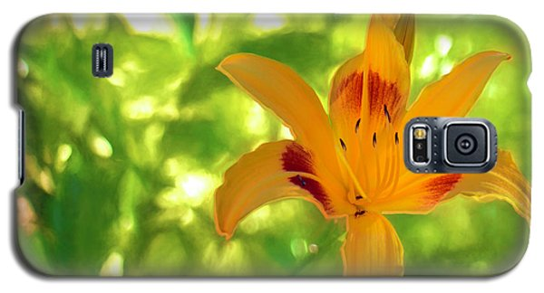 Daylily Galaxy S5 Case by Charles Ables