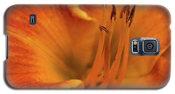 Galaxy S5 Case featuring the photograph Daylily Close-up by Sandy Keeton