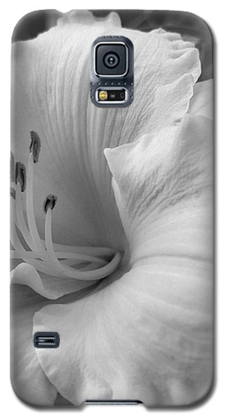 Daylily Delight In Black And White Galaxy S5 Case
