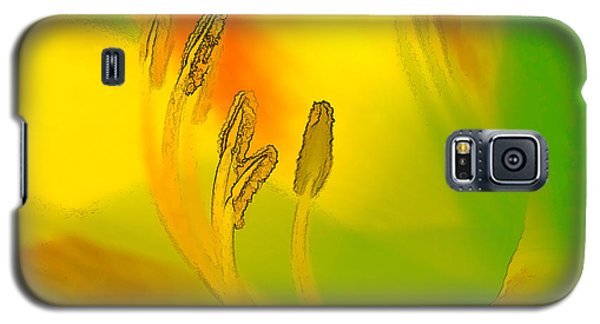 Daylily In Morning Light Galaxy S5 Case