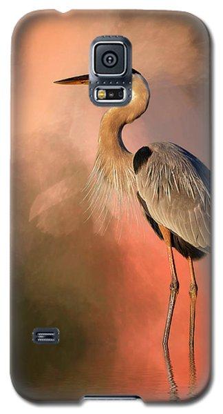 Day's Fiery End Galaxy S5 Case