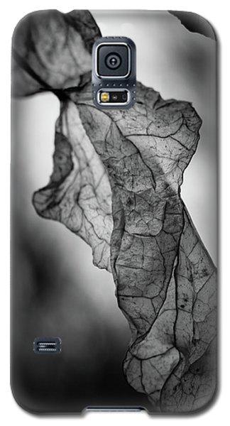 Fragile Leaf Bw Galaxy S5 Case