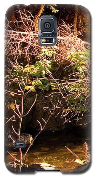 1 Of 6 Dead River Falls  Marquette Michigan Section Galaxy S5 Case by Michael Bessler