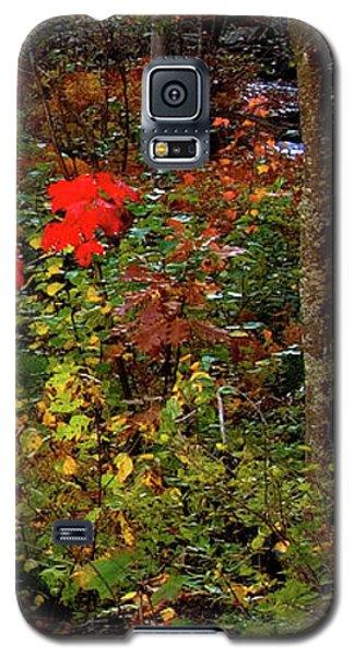 6 Of 6 Dead River Falls  Marquette Michigan Section Galaxy S5 Case