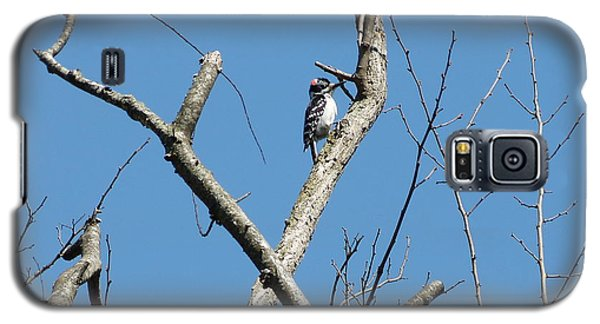Galaxy S5 Case featuring the photograph Dead Tree - Wildlife by Donald C Morgan