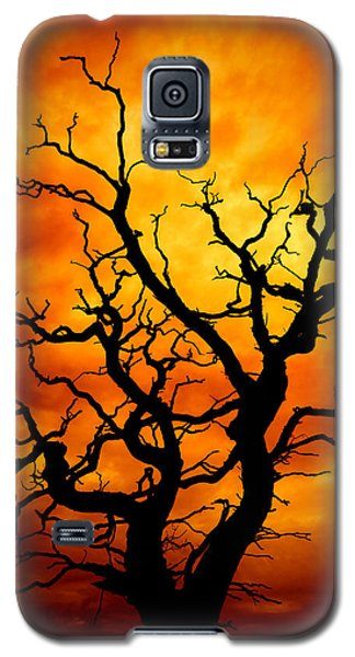 Dead Tree Galaxy S5 Case