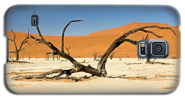 Deadvlei With Tree Galaxy S5 Case