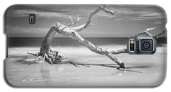 Death Of A Tree Galaxy S5 Case