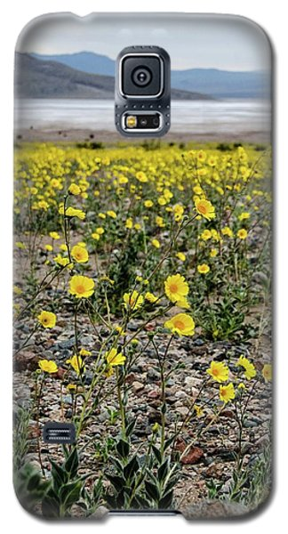 Death Valley Super Bloom Galaxy S5 Case