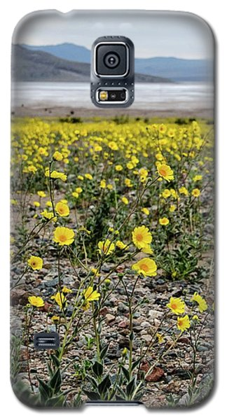 Death Valley Super Bloom Galaxy S5 Case