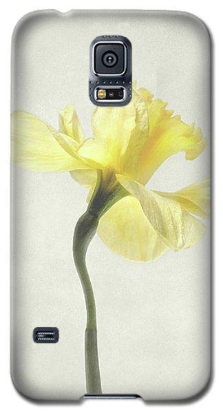 Decadent Daffodil Galaxy S5 Case