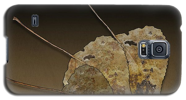 Galaxy S5 Case featuring the photograph Decaying Leaves by Joe Bonita