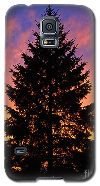 December Sunset Galaxy S5 Case by Mark Miller
