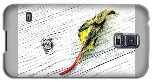 Deck Leaf Galaxy S5 Case