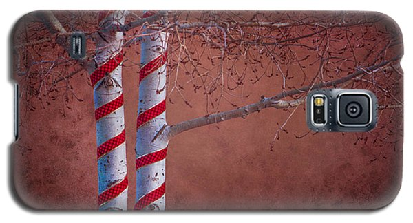 Decorated Aspens Galaxy S5 Case