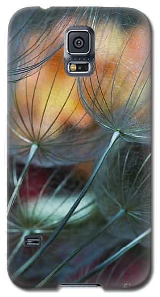 Deep Blue Dandelions Galaxy S5 Case by Iris Greenwell