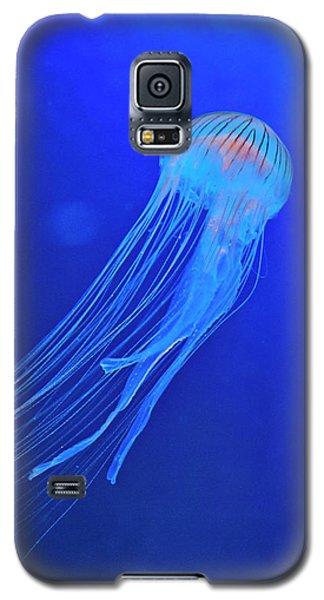 Deep Blue Sea Galaxy S5 Case