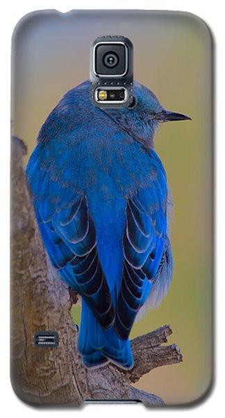 Deep Blue Galaxy S5 Case by Shane Bechler