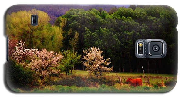 Galaxy S5 Case featuring the photograph Deep Breath Of Spring El Valle New Mexico by Anastasia Savage Ealy