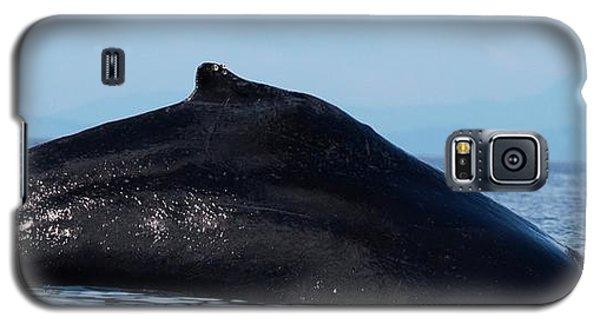 Deep Dive Galaxy S5 Case