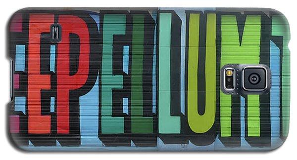 Deep Ellum Wall Art Galaxy S5 Case