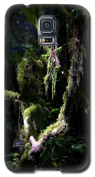 Galaxy S5 Case featuring the photograph Deep In The Forest by Lori Seaman