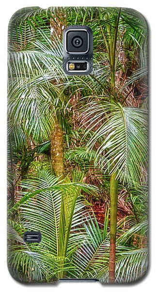 Galaxy S5 Case featuring the photograph Deep In The Forest, Tamborine Mountain by Dave Catley