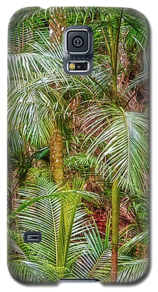 Deep In The Forest, Tamborine Mountain Galaxy S5 Case by Dave Catley