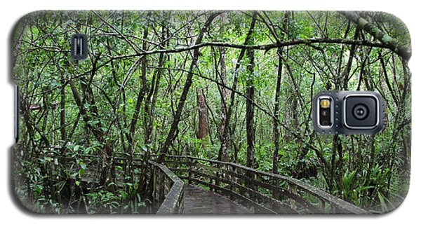 Deep In To The Swamp Galaxy S5 Case by Barbara Bowen